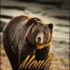 Giveway Canale Youtube 25.0... - last post by Monk.
